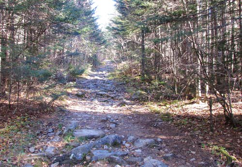 Mount Carleton Trail