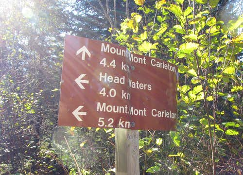 Mount Carleton Trail Intersection