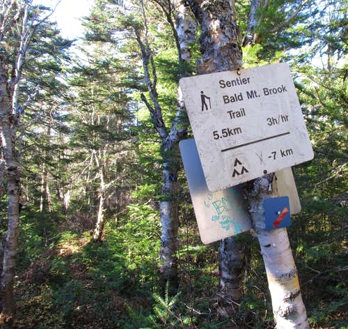 Mount Carleton, Bald Mountain Brook Intersection