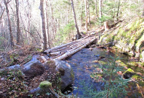 Mountain Carleton, log bridge