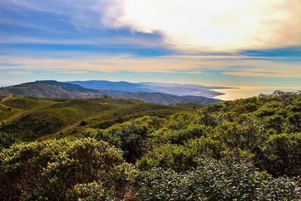 Down  the Coast Range