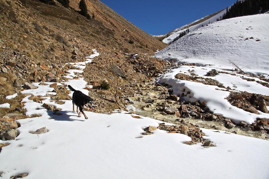 Silver Creek Trail