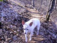 Good Hiking Partner
