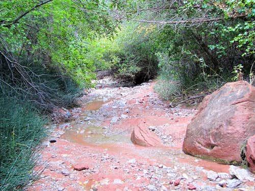 Middle Fork of Taylor Creek