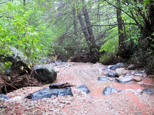 North Fork of Taylor Creek