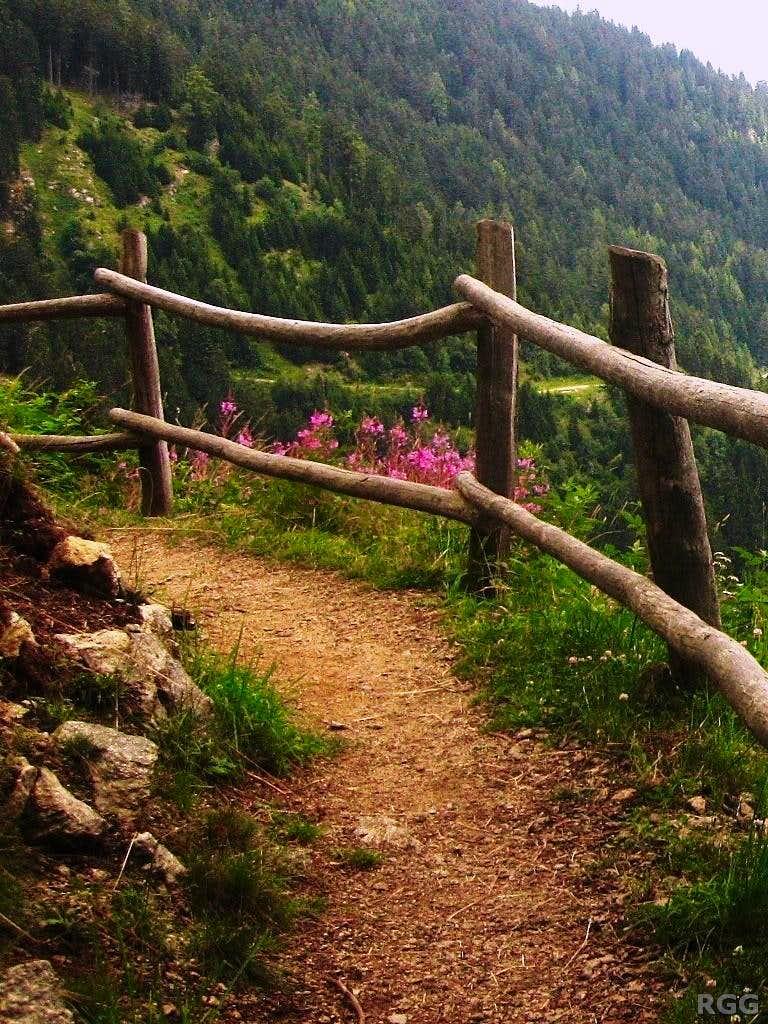 The Meraner Höhenweg, between Nassereithhütte and Tablander Alm