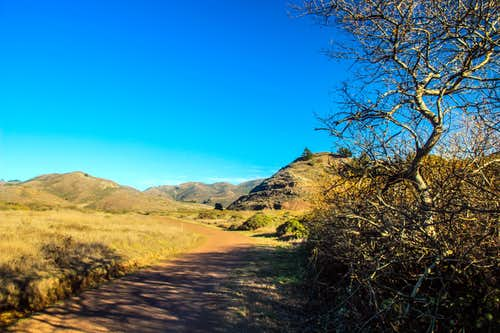 Miwok Trail in Gerbode Valley