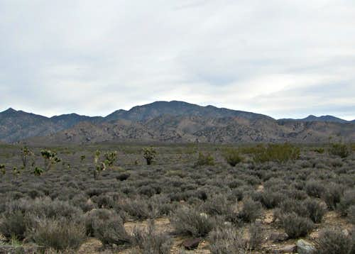 2013 in Nevada -McCullough Mountain (NV)