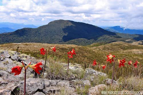 Summit view to Serra Negra Peak
