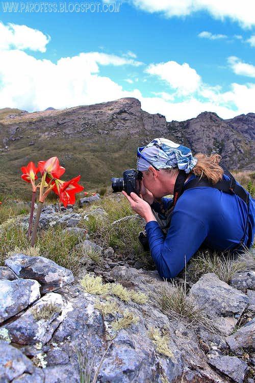 Tacio photographing a Amarilis with his fish-eye lenses