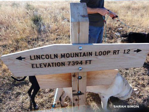Reaching the Lincoln Mountain Loop