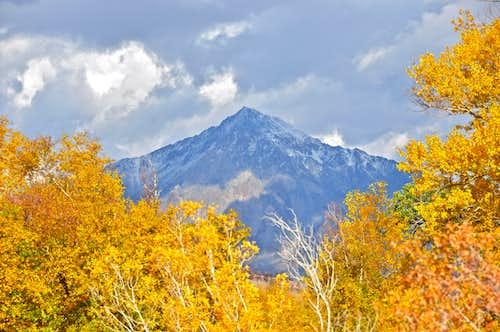 Fall Colors around Bishop Creek