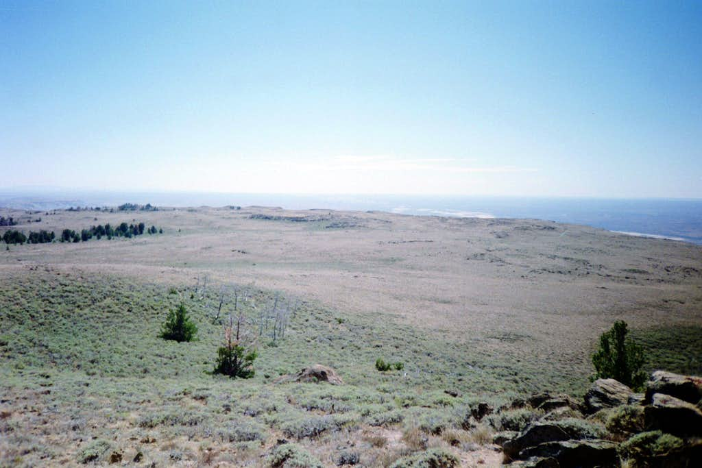 The summit area of Steamboat Mountain.