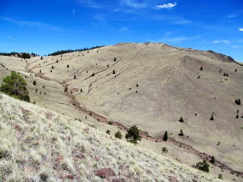 dikes along Taylor's slopes