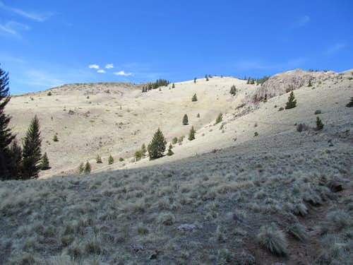 view of trail ascending to summit