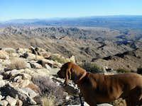 View from Ireteba