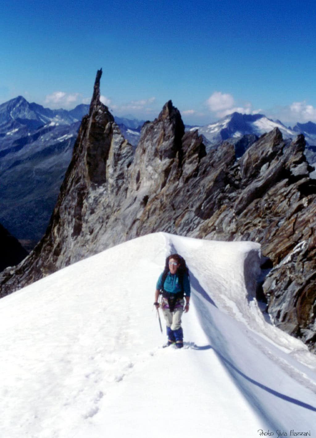 A crazy needle along Picco dei Tre Signori-Dreiherrenspitze Normal route