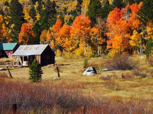 Rustic cabin tucked beneath...