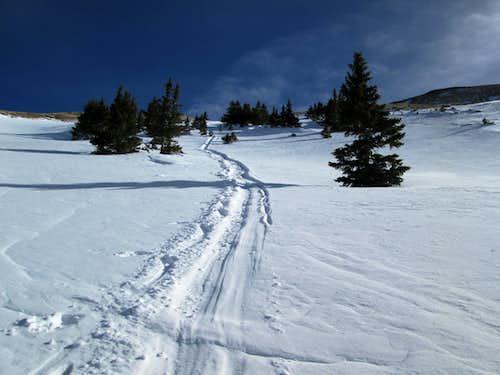 My sled trail