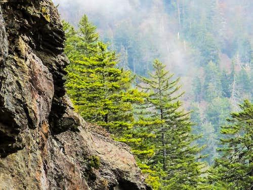 Bluff slate rock and Mist