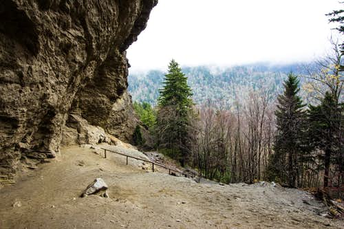Alum Cave Bluff from the top
