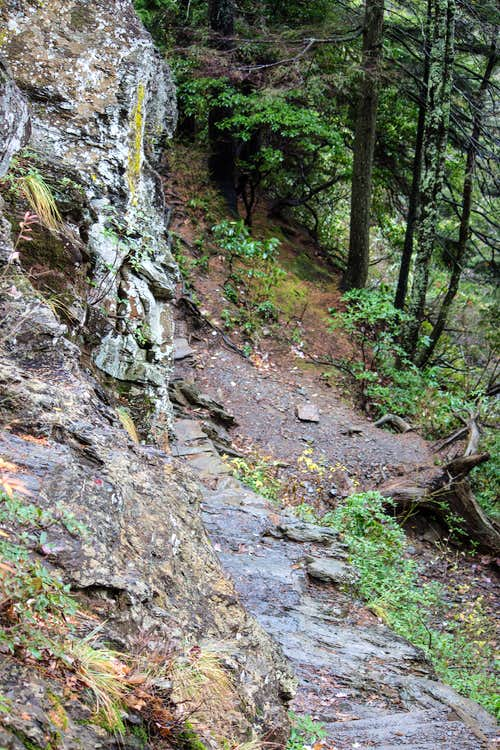 Carved steps with cables just before Alum Cave Bluff