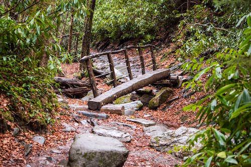 Dry Log Bridge Crossing