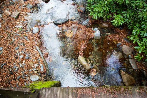 Glossy pool along Alum Cave Creek