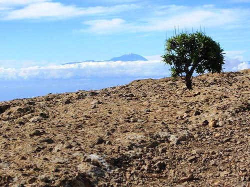 Pico del Teide from Gran Canaria