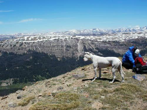 Austin Peak Summit View Of Teton Wilderness