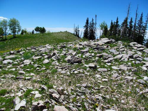 summit area rocks