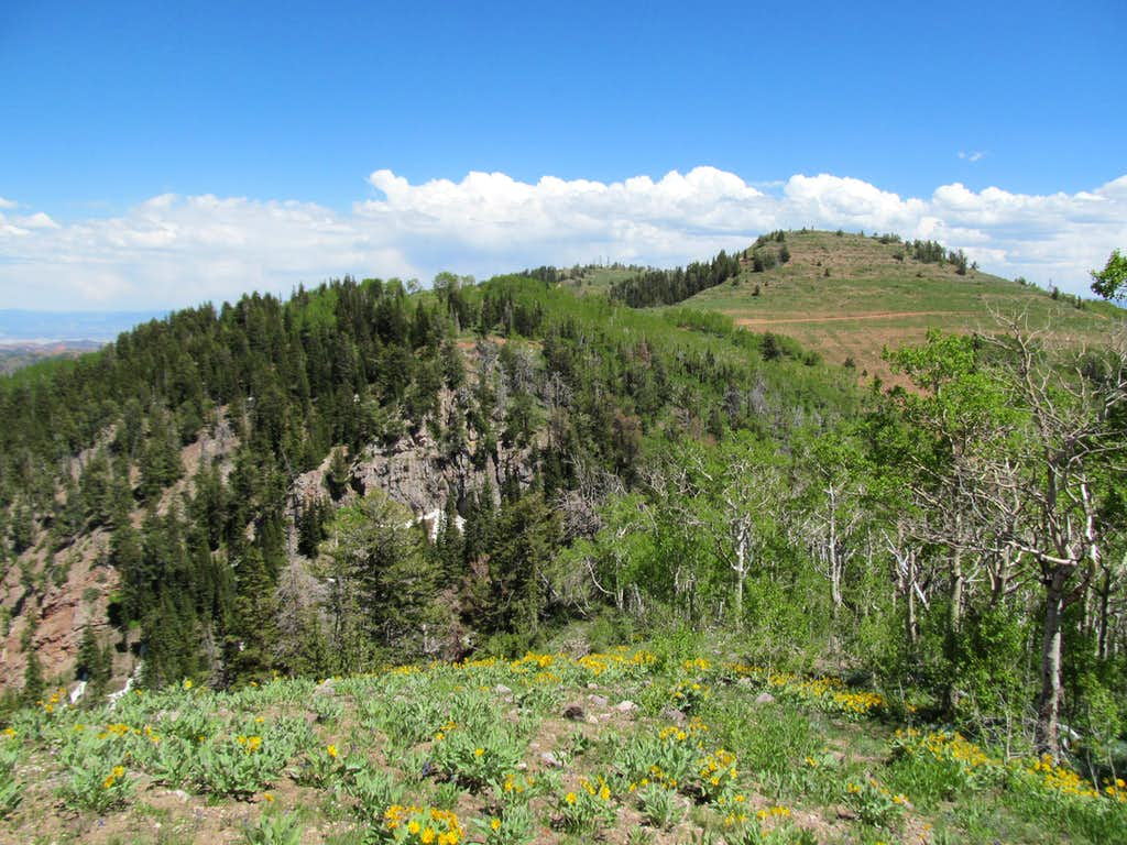 nearby White Pine Peak to the east