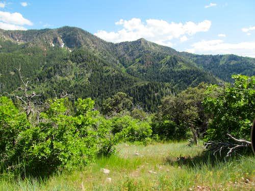 Mine Camp Peak
