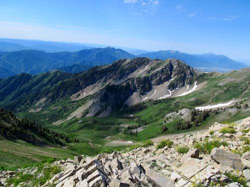 Surviving the Utah June Gloom