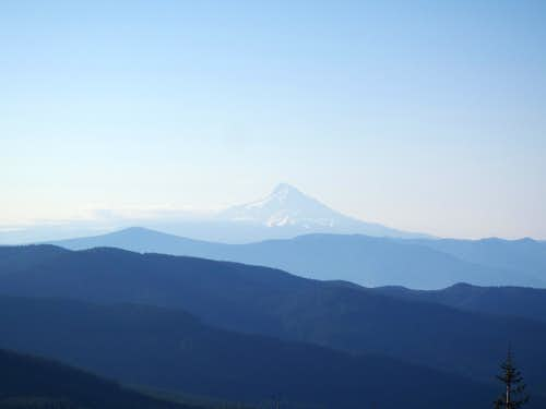 Mount Hood, from Red Mountain