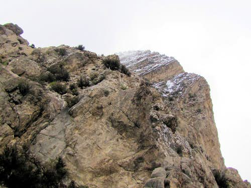 Summit of Turtlehead Peak
