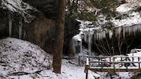 left half mineral springs