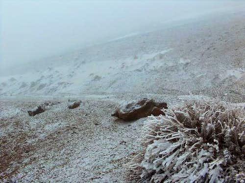 Teide, 30th Januari. Lots of...