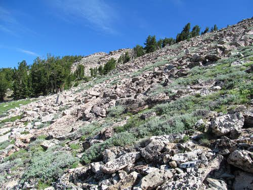 ascent slopes getting a little rockier