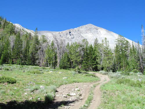 walking the dirt track towards Redbird's NE flanks