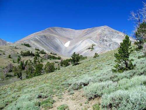 Redbird Mountain