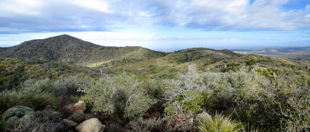 Black Mountain AZ