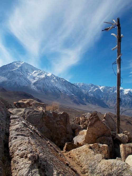 Mount Tom from Tungsten Peak