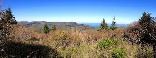 Mount Hardy Panorama