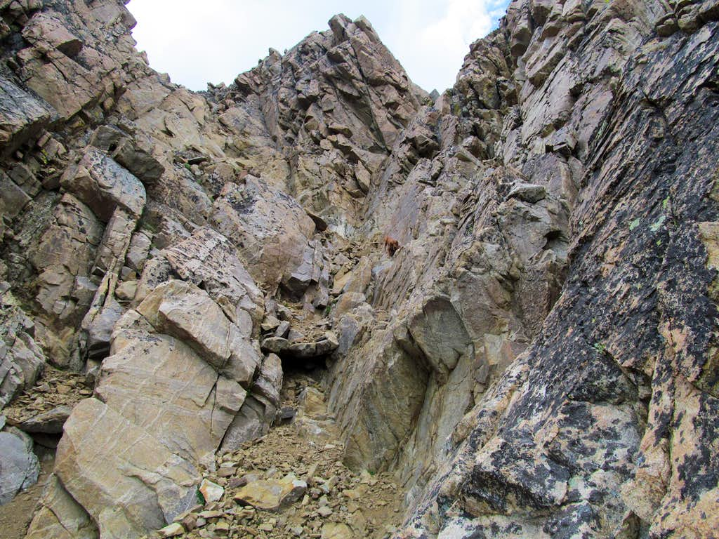 upper reaches of South Gully
