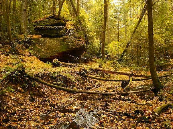 Rough Trail Carpet