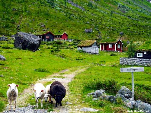 The hamlet of Eggjestøylen below Eggjenibba