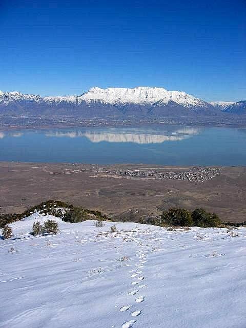 Mt. Timpanogos reflecting in...