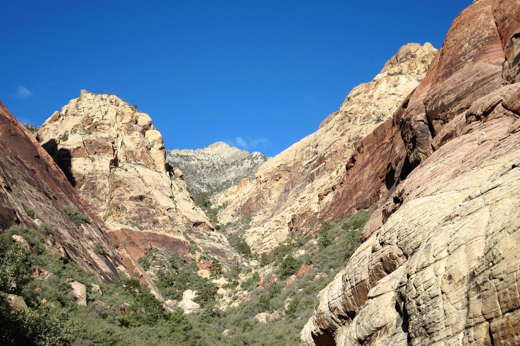 First Creek Canyon