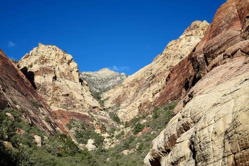 First Creek Canyon